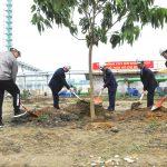 Tổng Công ty Khoáng sản ra quân hưởng ứng Tết trồng cây